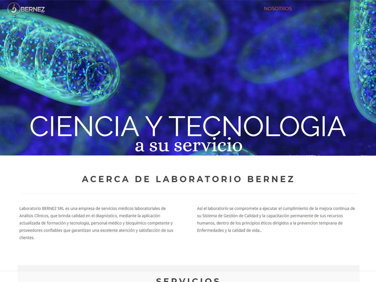 diseño web bernezsrl