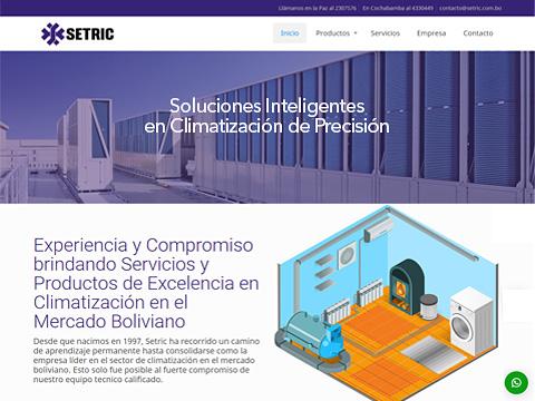 diseño web setric