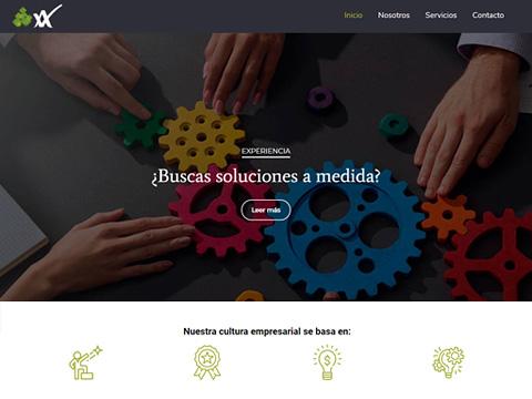 diseño pagina web para Vasrl